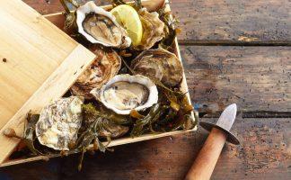 法國活生蠔 (French Live Oysters)