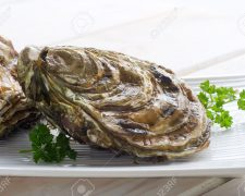 10408624-fresh-french-oyster-Stock-Photo-oyster (123rf)