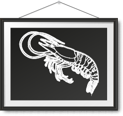 急凍海虎蝦 Frozen Giant Tiger Prawn Photo Frame