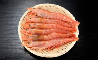 Argentine red shrimp freshness 1