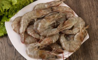 Whiteleg prawn freshness