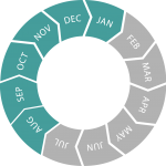 Seasonal circle (Aug - Jan)