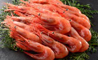 刺身級 甜蝦 (Frozen wild caught sweet shrimp)
