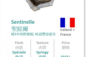France n Ireland - Sentinelle 聖庭爾