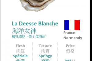 Normandy - La Deesse Blanche 海洋女神