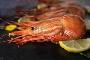 加拿大牡丹蝦刺身 Spot Shrimp Sashimi